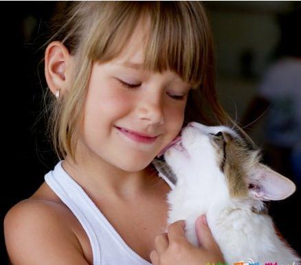 為什麼貓不喜歡被親?貓咪是怎樣親吻主人的?