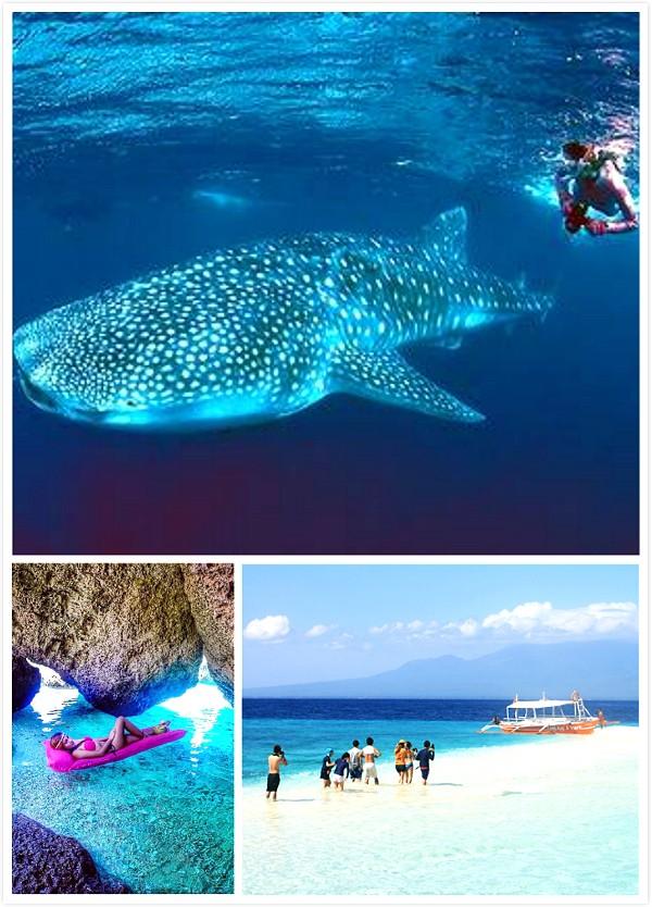 【遊山玩水好去處!】菲律賓Cebu必去的8個地方!讓你體驗」菲」一般的旅程~爽爽噠 (o◕∀◕)