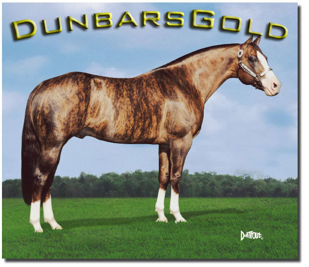Dunbar's Gold is a peculiar type of brindle horse.