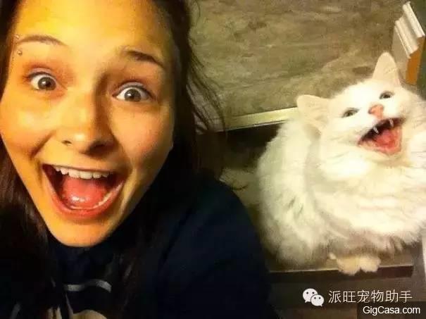爆笑!!25張照片證明主人跟寵物之間會越長越像!第13張我真的把我笑到爬不起來!