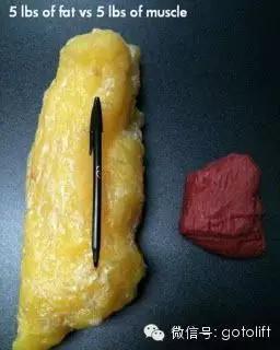 體脂率下降5%,變化竟然如此驚人,請告訴身邊減肥的人!
