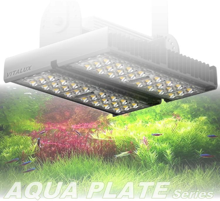 AQUA-PLATE-DM2.jpg