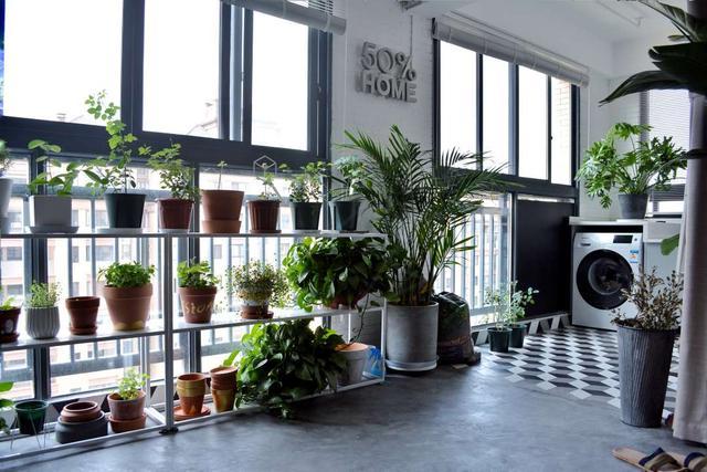 88平2居室自己設計小屋大愛工作台洞洞板和收納強大的廚房