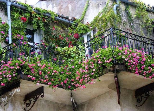 陽台變花房,滿足都市女孩一個浪漫的夢