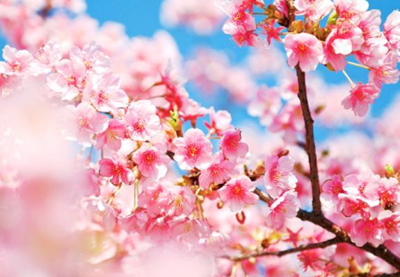 人生記住這幾點:珍惜點、小心點、忍著點、幫著點、看開點、努力點、寬心點