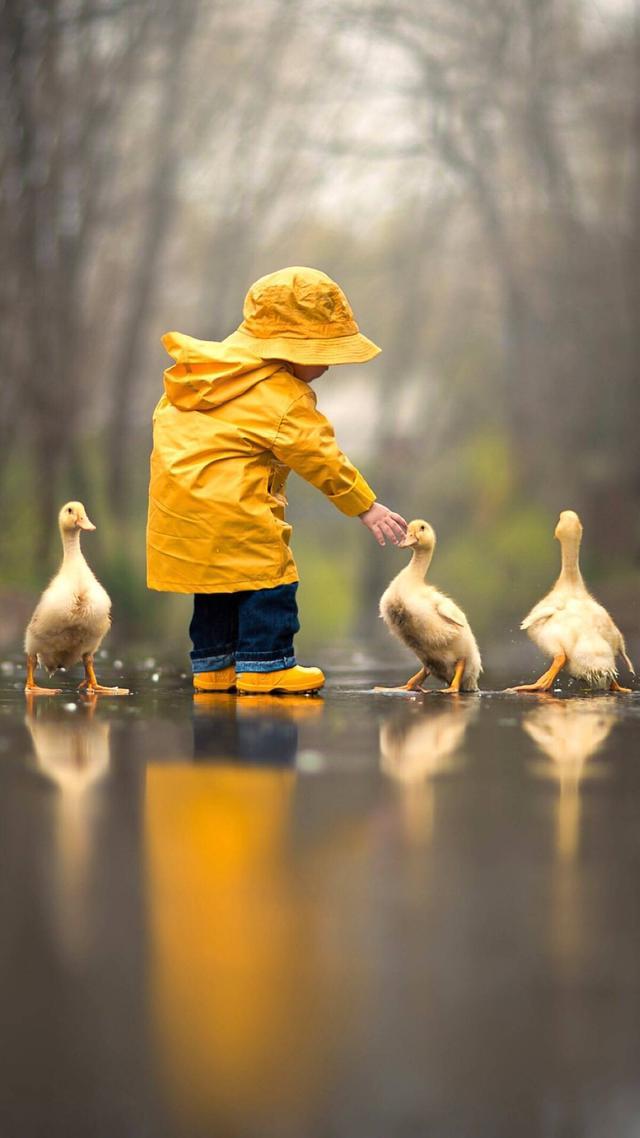 生活就是這樣,越懂事的人,承受的就越多