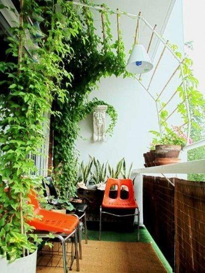 50款陽台花園,有1個,10年不想出門!