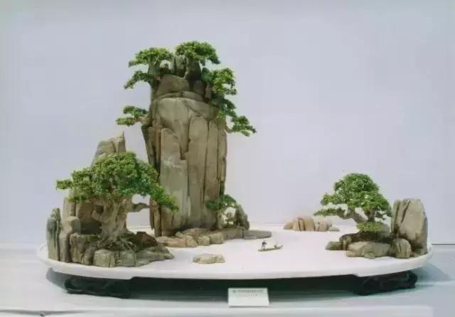 世界上又一奢侈品《盆栽》一盆就是一座房子!