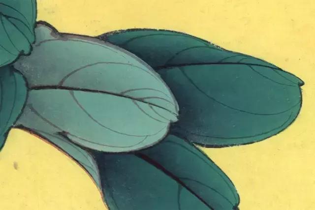 【教程】《牡丹名品十二釵》全套繪製步驟圖