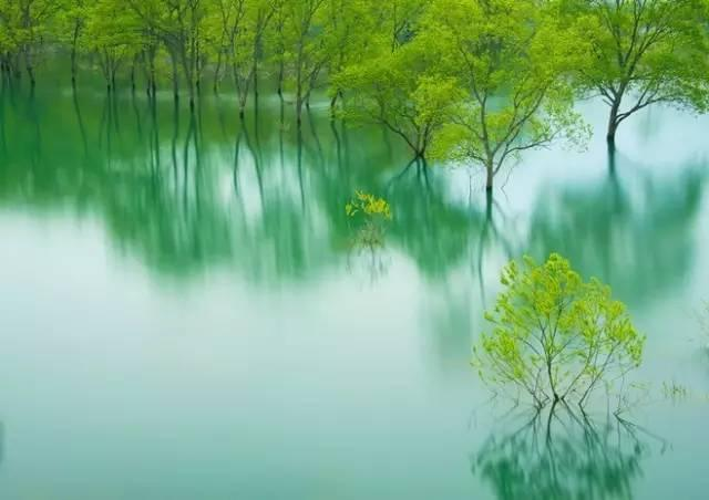 人生的最高境界,是心靜