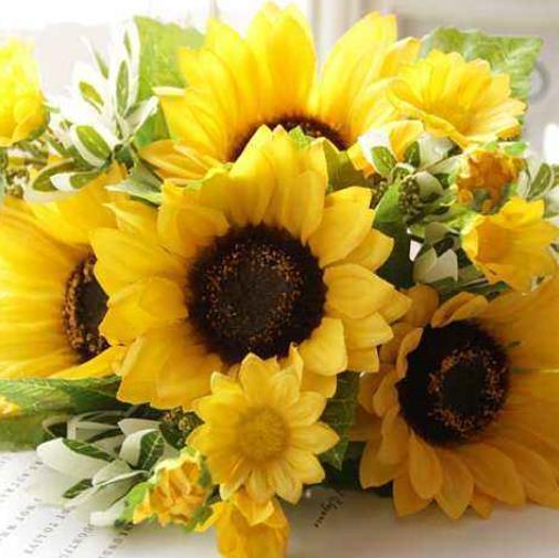 心理學:假如你是一隻蜜蜂,你最想採哪朵花? 測你最近會發生什麼
