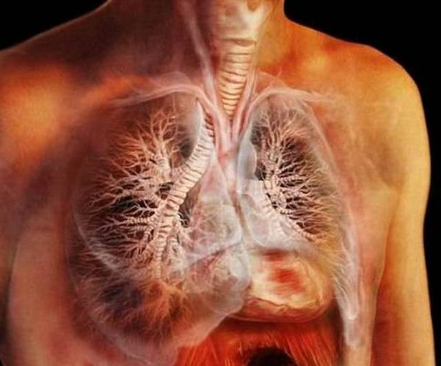 吸煙者,能完成五個小測試,說明你的肺部很健康!