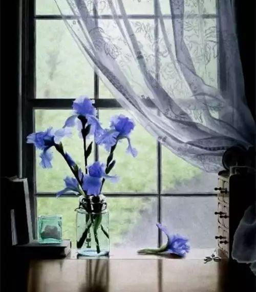 生命的美,在於寧靜