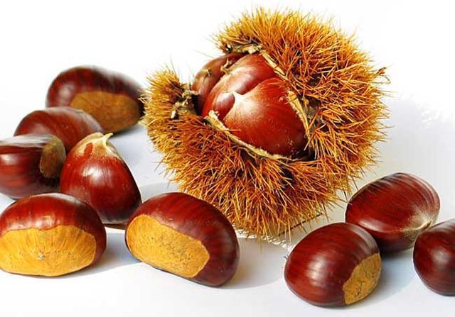 5種水果入腎經,常吃養腎補腎
