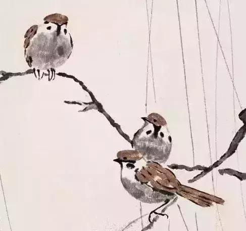 看看名家畫的小麻雀,有你喜歡的嗎?